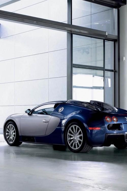 bugatti_veyron_03_carro.jpg