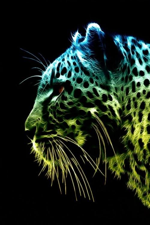 tigre_colorido.jpg