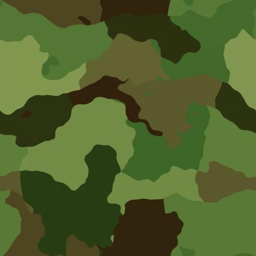 camouflage-pattern.jpg